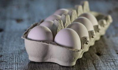 Amazing health benefits of eating eggs