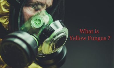 Everything you need to know about Yellow Fungus
