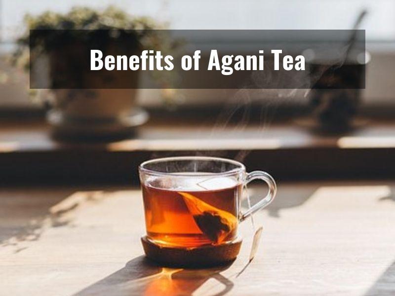 What is Ayurvedic Agani Tea and how it helps increase metabolism?