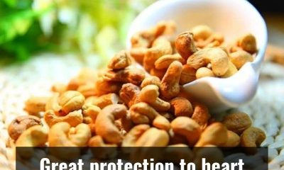 Nuts, seeds and plant oils protect from heart and other diseases: Study