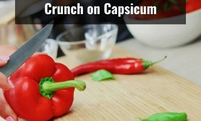 Top 5 reasons to include capsicum in your diet